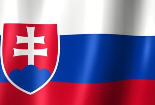 Flag_of_Slovakia_Wavy