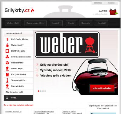 zobrazení webu na počítači