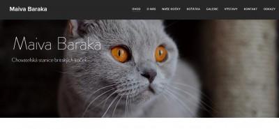 uživatelský web o kočkách